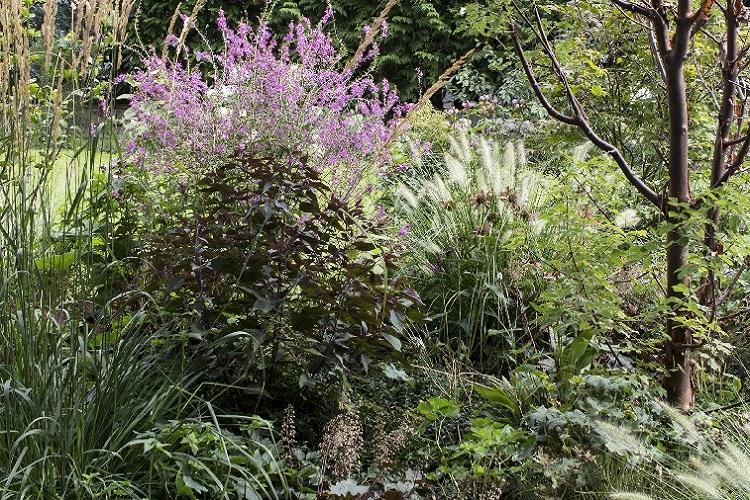 Bepflanzung Heggli Gartenbau Merenschwand